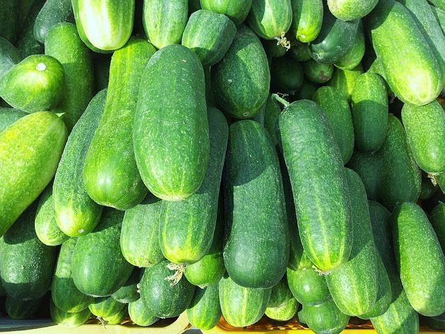 cucumbers-168501_640
