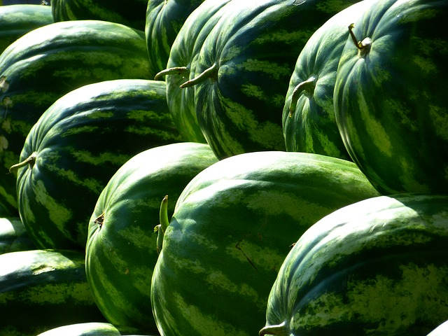 melons-197025_640