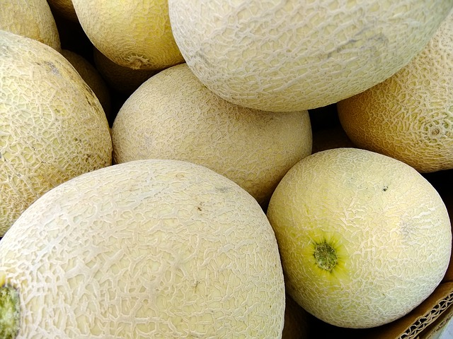 melons-65652_640