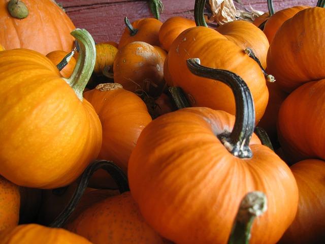 pumpkins-988837_640